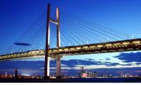 Japonia - podul viitorului